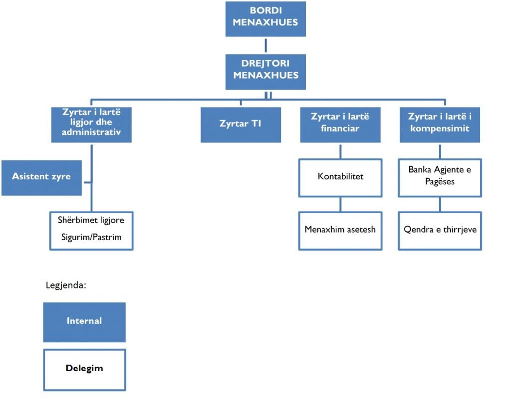 strukturaorganizative